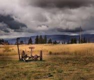 Συρμένος άλογο θεριστής Στοκ εικόνες με δικαίωμα ελεύθερης χρήσης