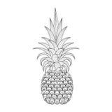 Συρμένος χέρι περίκομψος ανανάς, zentangle φυλετικά εξωτικά φρούτα για το α ελεύθερη απεικόνιση δικαιώματος
