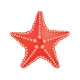 συρμένος χεριών τρύγος ύφους αστεριών θάλασσας απεικόνισης αρχικός διανυσματική απεικόνιση