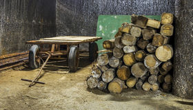 Συρμένο άλογο βαγόνι εμπορευμάτων μέσα στο αλατισμένο ορυχείο Στοκ εικόνες με δικαίωμα ελεύθερης χρήσης