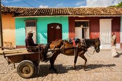 Συρμένο άλογο κάρρο σε μια οδό στο Τρινιδάδ Κούβα Στοκ φωτογραφία με δικαίωμα ελεύθερης χρήσης