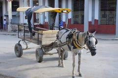 Συρμένο άλογο κουβανικό ταξί Στοκ φωτογραφίες με δικαίωμα ελεύθερης χρήσης