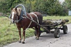 συρμένο άλογο Στοκ εικόνα με δικαίωμα ελεύθερης χρήσης