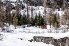 Συρμένο άλογο έλκηθρο Στοκ εικόνα με δικαίωμα ελεύθερης χρήσης