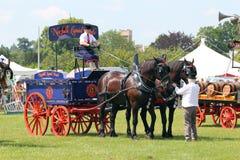 Συρμένο άλογο βαγόνι εμπορευμάτων ζυθοποιείων. Στοκ Φωτογραφία