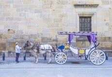 Συρμένο άλογο βαγόνι εμπορευμάτων στο Γουαδαλαχάρα Στοκ φωτογραφίες με δικαίωμα ελεύθερης χρήσης