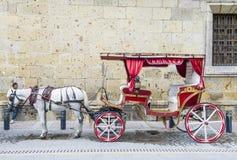 Συρμένο άλογο βαγόνι εμπορευμάτων στο Γουαδαλαχάρα Στοκ φωτογραφία με δικαίωμα ελεύθερης χρήσης