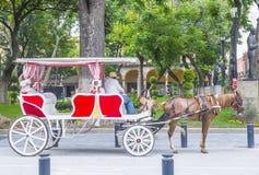 Συρμένο άλογο βαγόνι εμπορευμάτων στο Γουαδαλαχάρα Στοκ Φωτογραφίες