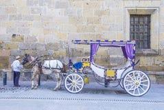 Συρμένο άλογο βαγόνι εμπορευμάτων στο Γουαδαλαχάρα Στοκ Εικόνες