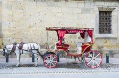 Συρμένο άλογο βαγόνι εμπορευμάτων στο Γουαδαλαχάρα Στοκ εικόνα με δικαίωμα ελεύθερης χρήσης