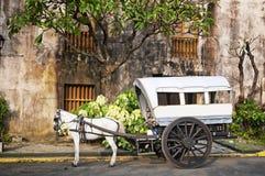 Συρμένο άλογο Calesa, Μανίλα - Φιλιππίνες Στοκ φωτογραφία με δικαίωμα ελεύθερης χρήσης