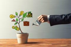 Συρμένο εισοδηματικό δέντρο στο άσπρο δοχείο για την αποταμίευση και την παραγωγή εμπορικής επένδυσης των χρημάτων Στοκ εικόνα με δικαίωμα ελεύθερης χρήσης