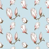 Συρμένο διάνυσμα άνευ ραφής σχέδιο λουλουδιών magnolia Στοκ Φωτογραφία