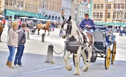συρμένο μεταφορά άλογο Στοκ Φωτογραφία