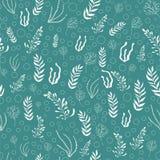 Συρμένο χέρι άνευ ραφής σχέδιο θαλασσίων φυτών Άσπρο φύκι στο τυρκουάζ υπόβαθρο διανυσματική απεικόνιση
