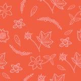 Συρμένο χέρι άνευ ραφής σχέδιο με το βακκίνιο, cloudberry, cowberry Στοκ εικόνα με δικαίωμα ελεύθερης χρήσης