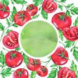 Συρμένο χέρι έμβλημα με τις κόκκινα ντομάτες και τα φύλλα watercolor στο άσπρο υπόβαθρο Στοκ εικόνα με δικαίωμα ελεύθερης χρήσης