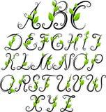 Αλφάβητο Eco Στοκ εικόνα με δικαίωμα ελεύθερης χρήσης