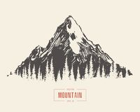 Συρμένο χέρι δασικό διάνυσμα πεύκων τοπίων βουνών απεικόνιση αποθεμάτων
