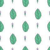 Συρμένο χέρι διανυσματικό άνευ ραφής floral σχέδιο, φύλλο μεντών, peppermint οφθαλμός που απομονώνεται στο άσπρο υπόβαθρο, πικάντ Στοκ Φωτογραφία