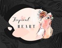 Συρμένο χέρι διανυσματικό αφηρημένο δημιουργικό τροπικό κολάζ παπαγάλων με την ελεύθερη οργανική σύσταση και την τροπική καρδιά σ Στοκ φωτογραφία με δικαίωμα ελεύθερης χρήσης