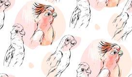 Συρμένο χέρι διανυσματικό αφηρημένο κατασκευασμένο γραφικό άνευ ραφής κολάζ σχεδίων με τους εξωτικούς τροπικούς παπαγάλους στο χρ Στοκ Εικόνες