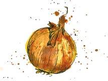 Συρμένο χέρι κρεμμύδι απεικόνιση αποθεμάτων