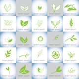 Συρμένο χέρι οργανικό σύνολο λογότυπων απεικονίσεων διανυσματικό Στοκ φωτογραφίες με δικαίωμα ελεύθερης χρήσης
