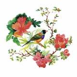 Συρμένο χέρι σχέδιο Watercolor με τα τροπικά θερινά λουλούδια και τα εξωτικά πουλιά Στοκ Εικόνα