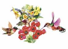 Συρμένο χέρι σχέδιο Watercolor με τα τροπικά θερινά λουλούδια και τα εξωτικά πουλιά Στοκ Εικόνες
