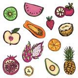 Συρμένο χέρι σύνολο διαφορετικών ειδών φρούτων ελεύθερη απεικόνιση δικαιώματος