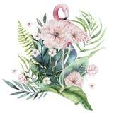 Συρμένο χέρι σύνολο πουλιών watercolor τροπικό φλαμίγκο με τα φύλλα Εξωτικός αυξήθηκε απεικονίσεις πουλιών, φύλλο δέντρων ζουγκλώ διανυσματική απεικόνιση