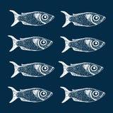 Συρμένο χέρι σύνολο σκίτσων διανύσματος ψαριών Στοκ Φωτογραφίες