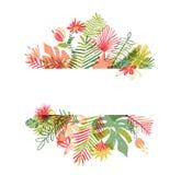 Συρμένο χέρι τροπικό λουλούδι, βοτανική διαμόρφωση απεικόνιση αποθεμάτων