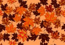 Συρμένο χέρι υπόβαθρο φθινοπώρου με τα όμορφα φύλλα απεικόνιση αποθεμάτων