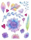 Συρμένο χέρι χρωματισμένο σύνολο Watercolor με τα floral στοιχεία ουράνιων τόξων ελεύθερη απεικόνιση δικαιώματος