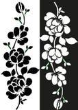 Συρμένο χέρι floral άνευ ραφής σχέδιο με τις σκιαγραφίες τριφυλλιού που απομονώνεται στο λευκό Χαριτωμένο γραφικό υπόβαθρο λουλου ελεύθερη απεικόνιση δικαιώματος