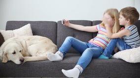 Συσκευές στις ζωές των παιδιών λίγος αδελφός και sister do selfie σε ένα smartphone, λυπημένο σκυλί βρίσκονται στον καναπέ απόθεμα βίντεο