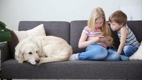 Συσκευές στις ζωές των παιδιών λίγο παιχνίδι αδελφών και αδελφών στο smartphone στο παιχνίδι, λυπημένη πλευρά σκυλιών κοντά απόθεμα βίντεο