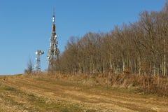 Συσκευή αποστολής σημάτων στο δασικό υπόβαθρο Στοκ Εικόνες