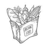 Συσκευασία εγγράφου με τα φρέσκα υγιή προϊόντα Οργανικά προϊόντα από το αγρόκτημα ελεύθερη απεικόνιση δικαιώματος