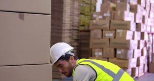 Συσκευασία εργαζομένων αποθηκών εμπορευμάτων επάνω στην παλέτα των κιβωτίων απόθεμα βίντεο