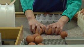 Συσκευασία κοτόπουλου εργοστασίων αυγών φιλμ μικρού μήκους