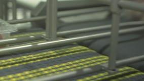 Συσκευασία κρέατος στο μεταφορέα απόθεμα βίντεο