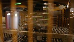 Συσκευασία των τσαντών με το τσιμέντο στους μεγάλους σωρούς φιλμ μικρού μήκους