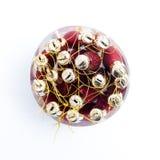 Συσκευασμένος κώνος Χριστουγέννων στοκ φωτογραφία με δικαίωμα ελεύθερης χρήσης