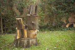 Συσσωρευμένα καθίσματα κολοβωμάτων στον κήπο ή το πάρκο Στοκ Εικόνα