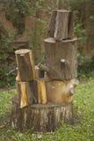 Συσσωρευμένα καθίσματα κολοβωμάτων στον κήπο ή το πάρκο Στοκ εικόνες με δικαίωμα ελεύθερης χρήσης