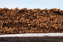Συσσωρευμένη ξυλεία, μύλος ξυλείας Στοκ Εικόνες