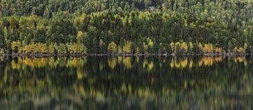 Συσσωρευμένη προκυμαία Στοκ Εικόνες
